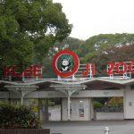 王子動物園フラミンゴ多すぎww