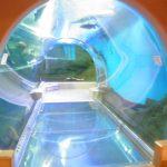 須磨海浜水族園のイルカショーにアマゾン水中トンネル?