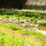 神河町の千ヶ峰南山名水は自然豊かでスッキリ飲めます!