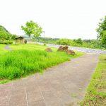 宍道湖SAはお土産ではカッチカチの吉田くんクッキー、景色は宍道湖を一望できます!