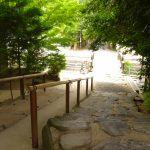 縁結びで有名な八重垣神社の縁を占う鏡の池占いは若い人向けの名物スポット!