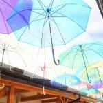 道の駅アグリの里栗東はコスパ最強巻き寿司にパン工房、350円モーニングが名物?