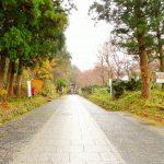 鳥取県大山の大神山神社は日本一の石段を誇る危険な神社?