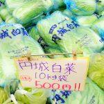 道の駅かもがわ円城は円城白菜が名物で10kg500円と超お得で買える!!
