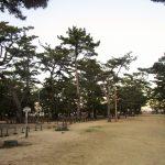 道の駅津田の松原は瀬戸内海の絶景を展望できる、天橋立に匹敵する松林の隠れ名所!