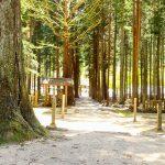 多可町にある青玉神社はすごいパワースポット!