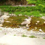 兵庫県に来たら是非汲んで欲しい飲み水3大名水を紹介!