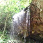 【裏見の滝】岡山県岩井滝は自然を全身で感じることができ、独占できる!