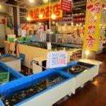 海鮮市場かろいち&かにっこ館は大人も子供も楽しめる鳥取の人気スポット!